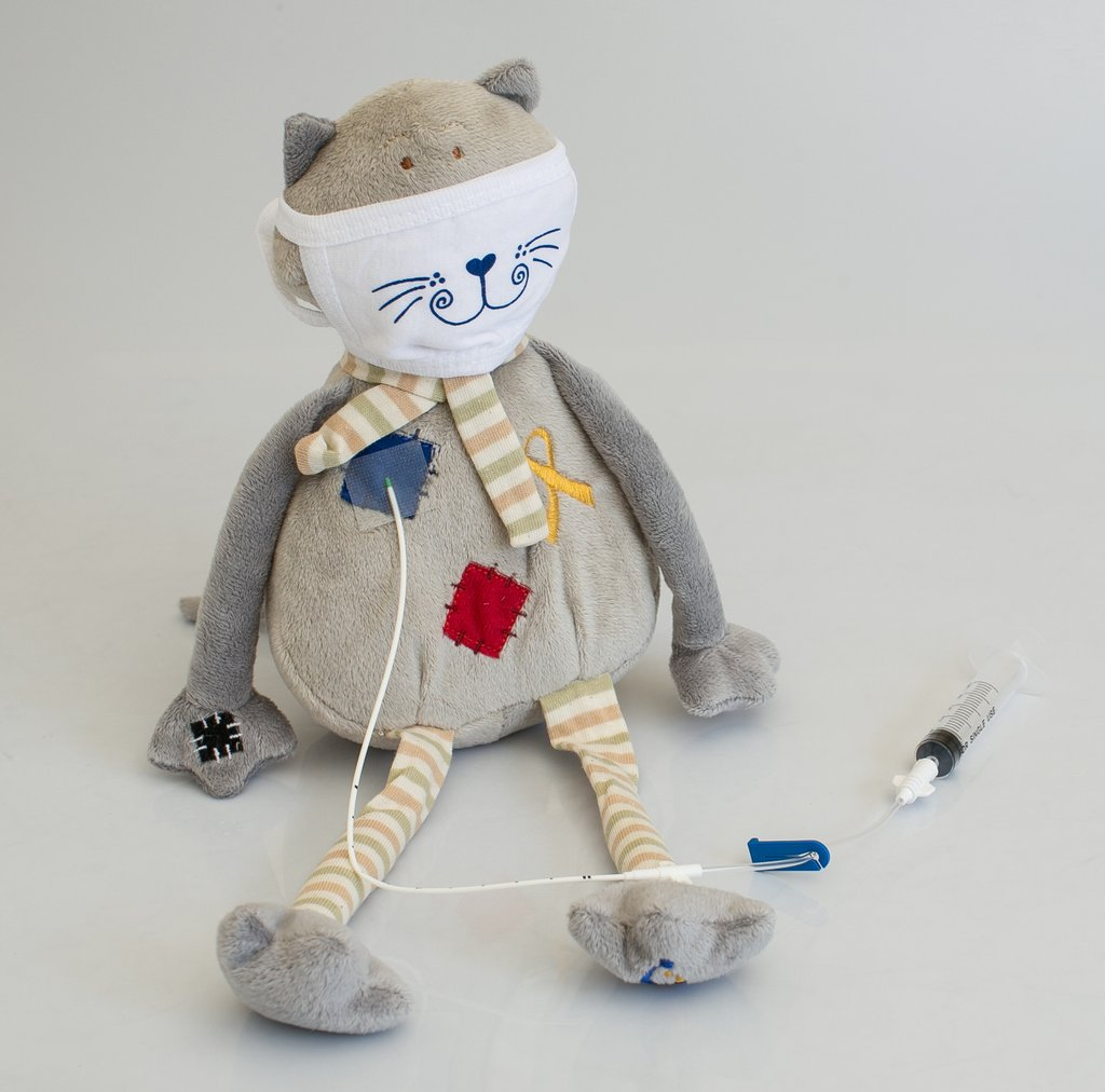 Gray-cat-front